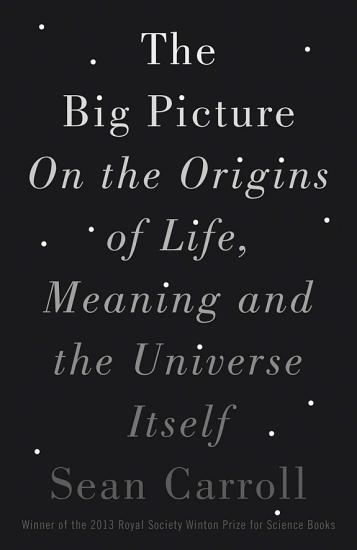 The Big Picture PDF