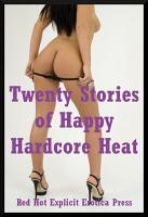 Twenty Stories of Happy Hardcore Heat PDF