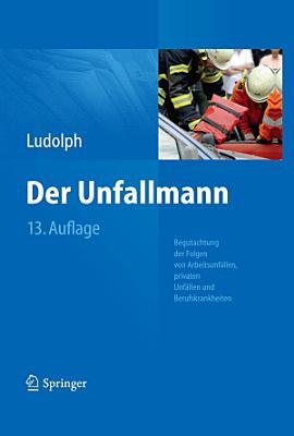 Der Unfallmann PDF