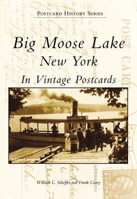 Big Moose Lake New York PDF