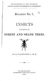 Insects Injurious to Forest and Shade Trees