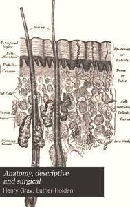 Anatomy  descriptive and surgical Book
