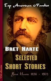 Selected Short Stories: Top American Novelist