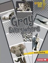 Gray Everywhere