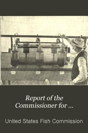 Report of the Commissioner for     PDF