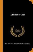 A Little Boy Lost PDF
