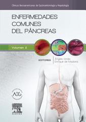 Enfermedades comunes del páncreas: Clínicas Iberoamericanas de Gastroenterología y Hepatología, Volumen 2