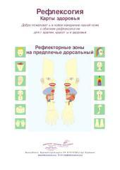Рефлекторные зоны на предплечье дорсальный