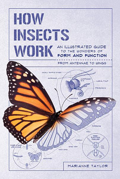 Download How Insects Work Book
