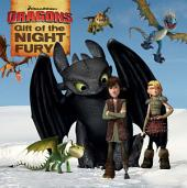 Gift of the Night Fury: with audio recording