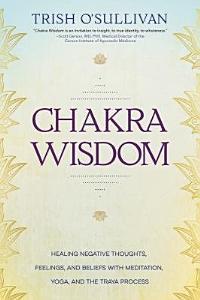 Chakra Wisdom Book