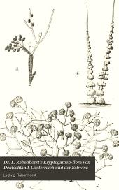 Dr. L. Rabenhorst's Kryptogamen-Flora von Deutschland, Oesterreich und der Schweiz: Die Pilze. Abt. 1-10. 1884-1920