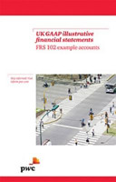 UK GAAP Illustrative Financial Statements  FRS 102 Example Accounts