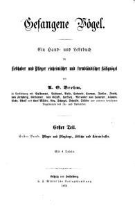 Gefangene V  gel PDF