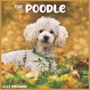 The Poodle Calendar 2022