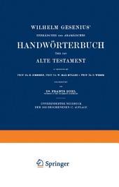 Wilhelm Gesenius' Hebräisches und Aramäisches Handwörterbuch über das Alte Testament: Ausgabe 17