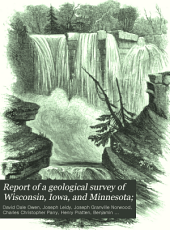 Report of a Geological Survey of Wisconsin, Iowa, and Minnesota: And Incidentally of a Portion of Nebraska Territory. Made Under Instructions from the United States Treasury Department