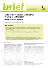 Multilevel governance and land use in Chiapas and Yucatan: Lessons for REDD+ in Mexico