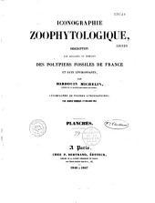 Iconographie zoophytologique, description par localités et terrains des polypiers fossiles de France et pays environnants