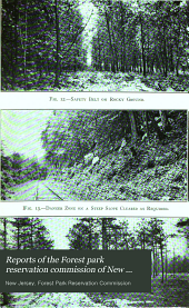 Reports of the Forest Park Reservation Commission of New Jersey: First- Tenth Annual Report for the Year Ending October 31st 1905- 1914, Issues 5-10