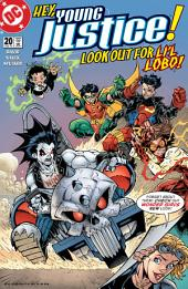 Young Justice (1998-) #20