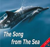 The Song from the Sea: Little Kiss15