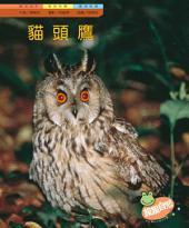貓頭鷹: 親親自然115