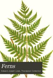 Ferns: British and Exotic: Volume 4