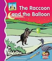 Raccoon and the Balloon