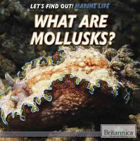What Are Mollusks  PDF