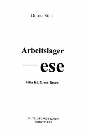 Arbeitslager Riese PDF