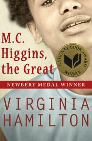 M C  Higgins  the Great PDF