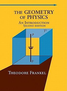 The Geometry of Physics PDF