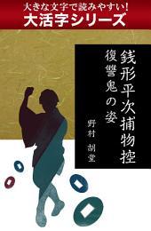 【大活字シリーズ】銭形平次捕物控 復讐鬼の姿
