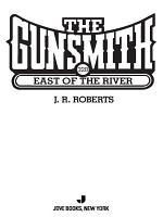 The Gunsmith 328 PDF