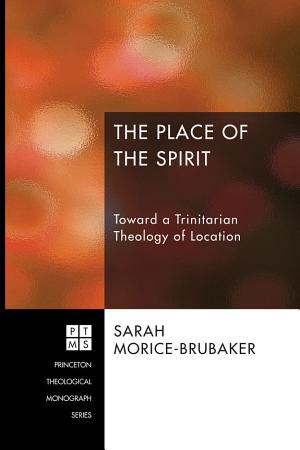 The Place of the Spirit PDF