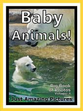 Just Baby Animals! vol. 4: Big Book of Photographs & Baby Animal Pictures