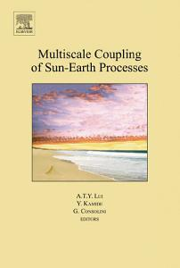 Multiscale Coupling of Sun Earth Processes