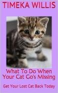What To Do When Your Cat Go s Missing