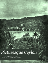 Picturesque Ceylon: Volume 2