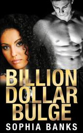 Billion Dollar Bulge: Billionaire Erotica
