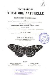 Encyclopédie d'histoire naturelle ou Traité complet de cette science, d'après les travaux des naturalistes les plus éminents de tous les pays et de toutes les époques: Papillons, Volume2