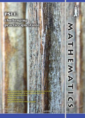 Singapore PSLE Mathematics Challenging Practice Questions  Yellowreef  PDF