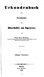 Urkundenbuch zur Geschichte der Bischöfe zu Speyer: Jüngere Urkunden, Band 2