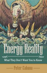 Energy Reality Book PDF