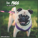 The Pugs 2021 Calendar