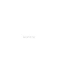 Working Paper Series PDF