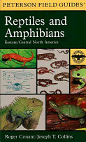 A Field Guide to Reptiles   Amphibians PDF