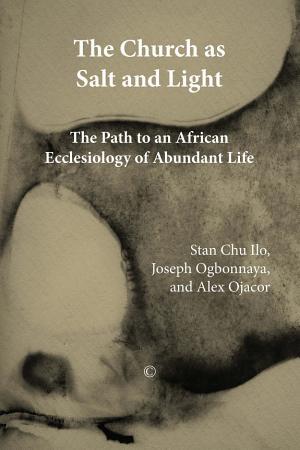 The Church as Salt and Light PDF