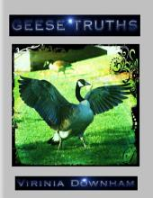 Geese Truths